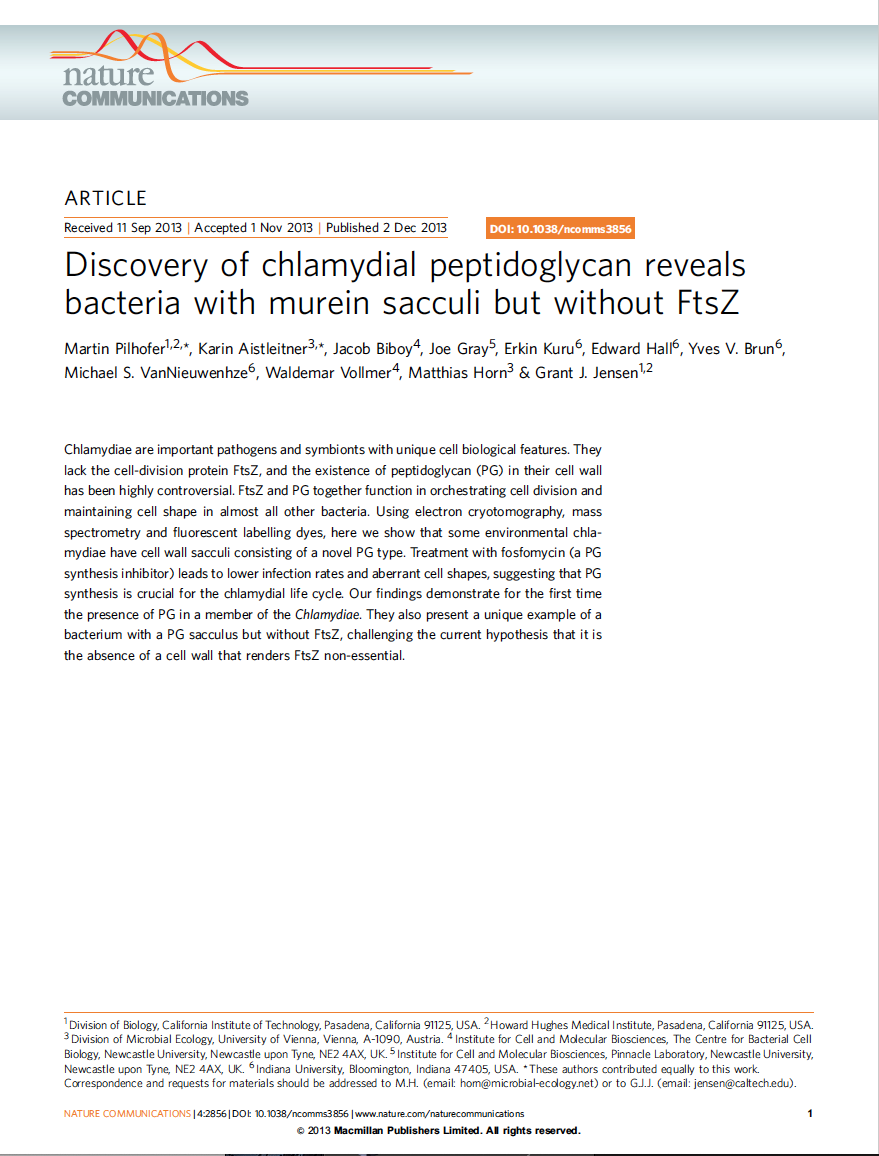 Discovery of chlamydial peptidoglycan reveals bacteria with murein sacculi but without FtsZ