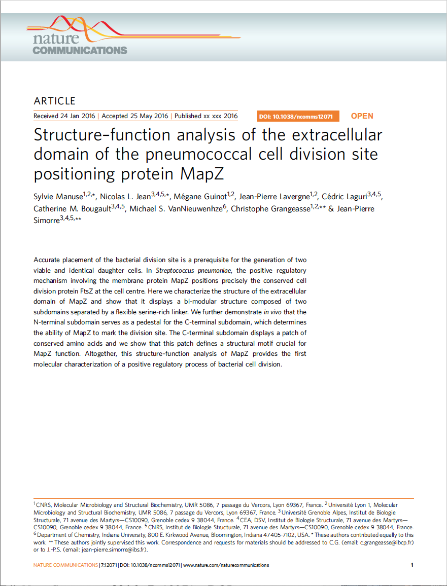 Structure-function analysis of the extracellular domain of the pneumococcal cell division site positioning protein MapZ