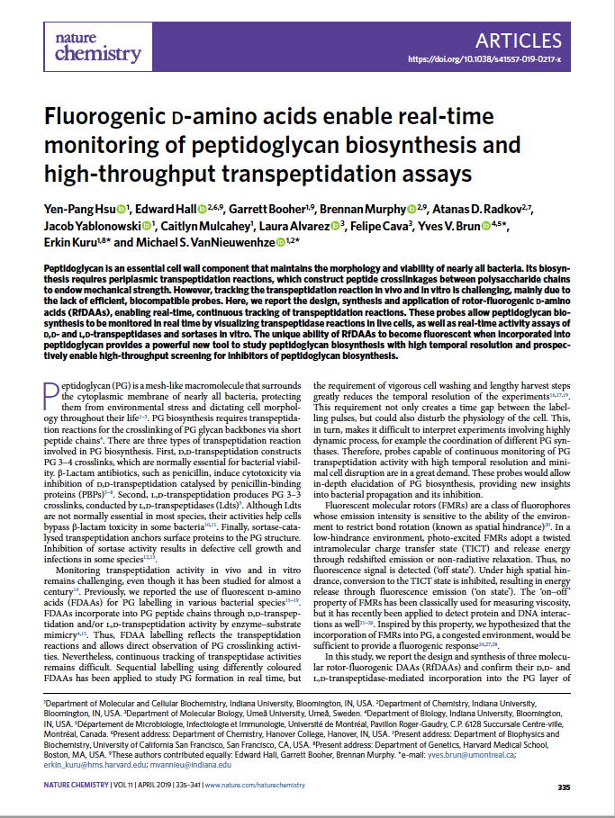 Fluorogenic D-amino acids enable real-time monitoring of peptidoglycan biosynthesis and high-throughput transpeptidation assays