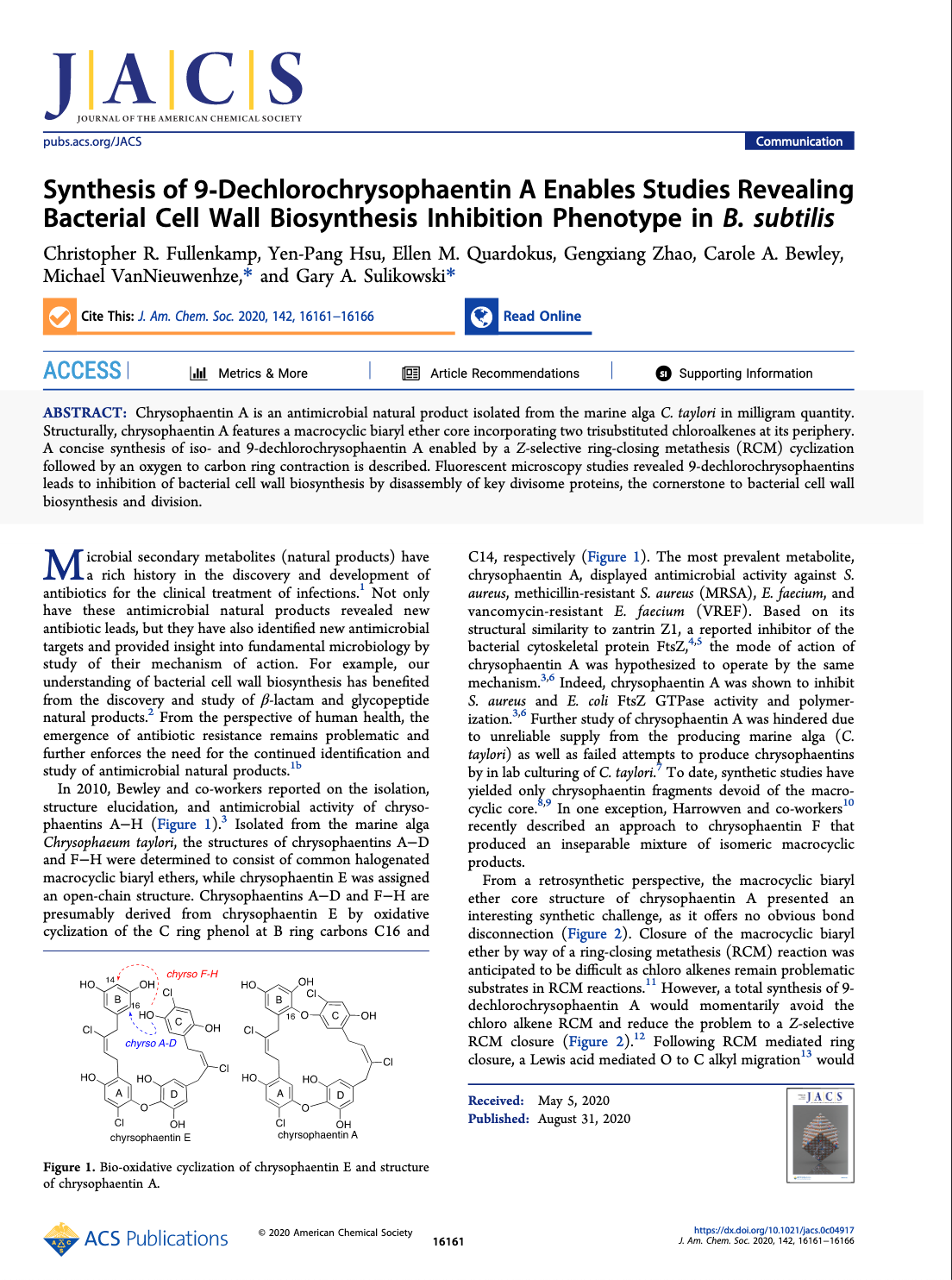 Synthesis of 9-Dechlorochrysophaentin A Enables Studies Revealing Bacterial Cell Wall Biosynthesis Inhibition Phenotype in B. subtilis